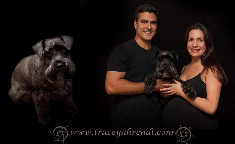 www.traceyahrendt.com_maternity6