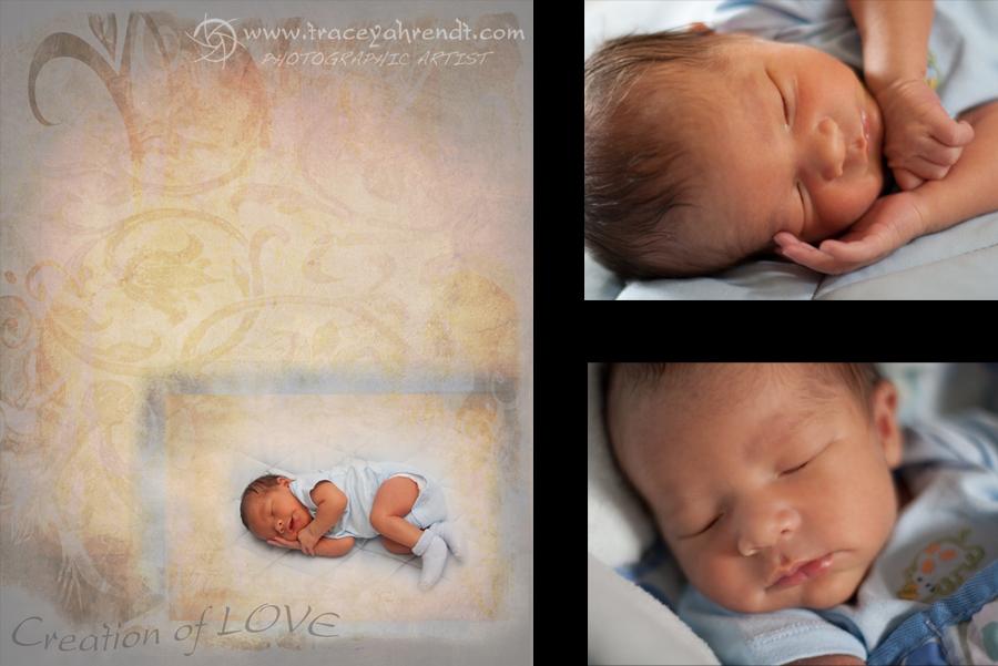 www.traceyahrendt.com_newborn