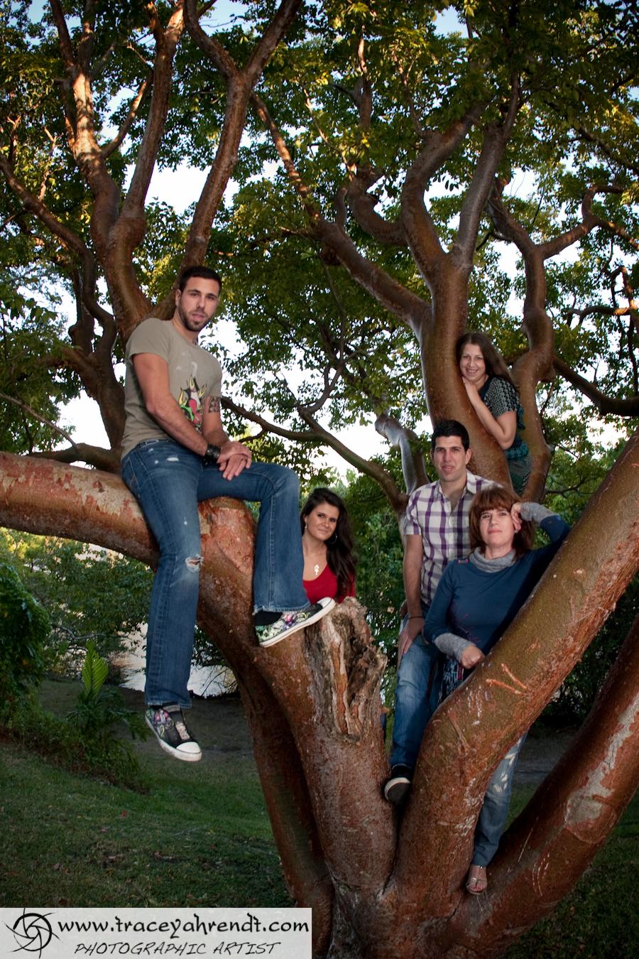 www.traceyahrendt.com_family_portriat-0001