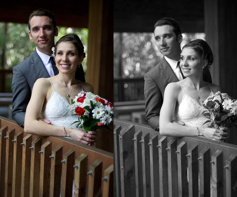 Professional Wedding Portraits